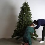 Beautiful Christmas trees online