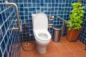 safety rails for bathrooms