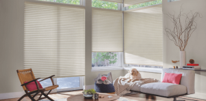 blinds swansea