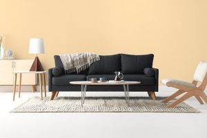 Tips for Finding the Best Furniture Store in Dandenong