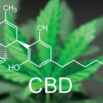 CBD Oil - Know the Details Today