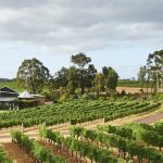 Get Ready To Drown In The Heavenly Essence Of Margaret River Wineries